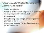 primary mental health workers in camhs the nature