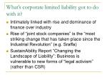 what s corporate limited liability got to do with it
