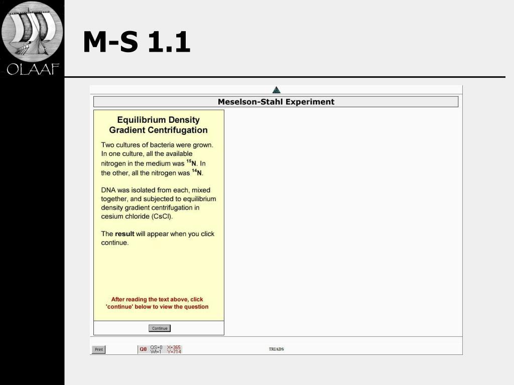 M-S 1.1