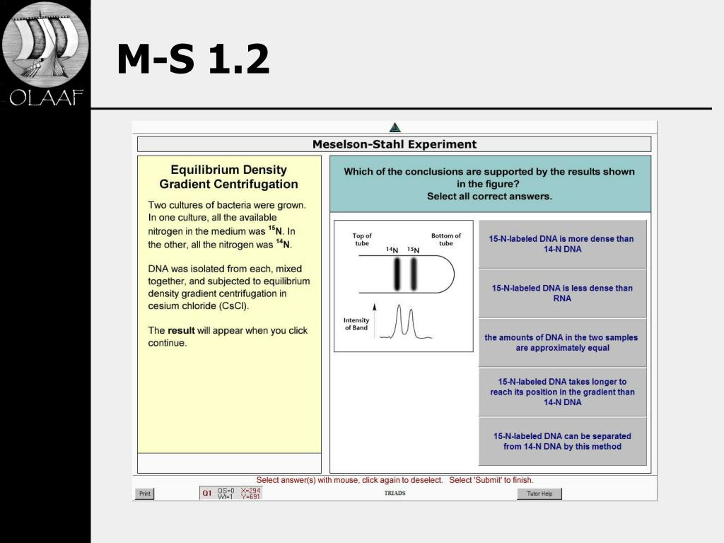 M-S 1.2