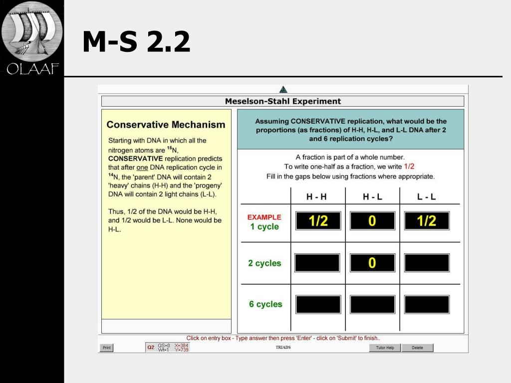 M-S 2.2