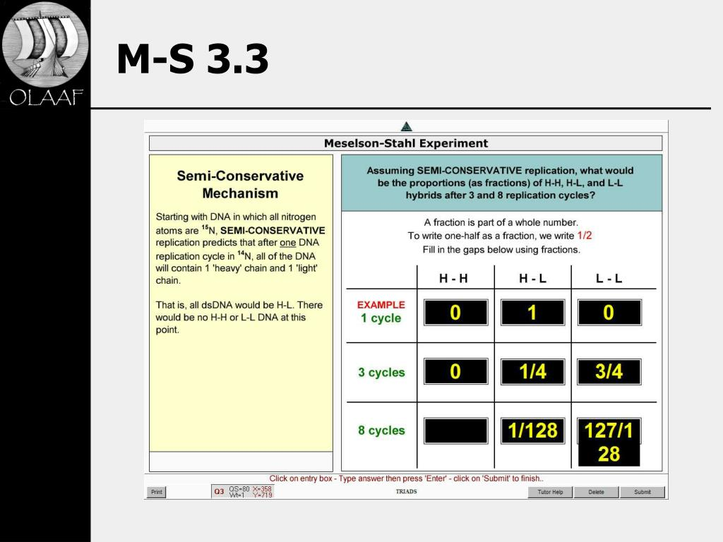 M-S 3.3