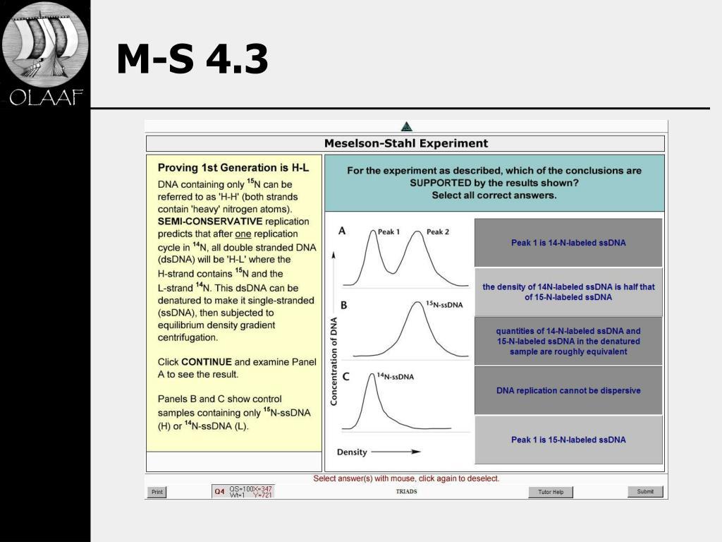 M-S 4.3