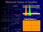 multiscale nature of variables