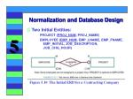 normalization and database design24