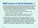 mhd issues of liquid blankets 1