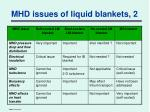 mhd issues of liquid blankets 2