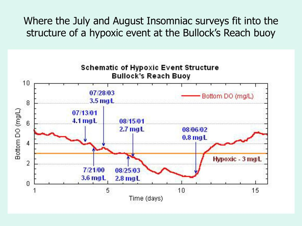Where the July and August Insomniac surveys fit into the structure of a hypoxic event at the Bullock's Reach buoy