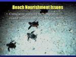 beach nourishment issues25