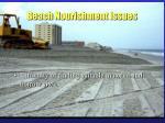 beach nourishment issues27