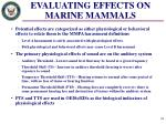 evaluating effects on marine mammals