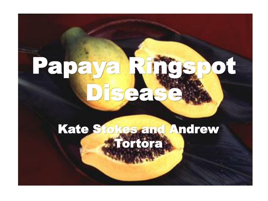 papaya ringspot disease l.