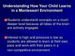 understanding how your child learns in a montessori environment