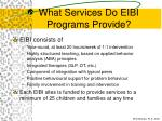 what services do eibi programs provide