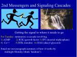 2nd messengers and signaling cascades