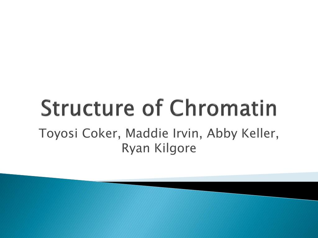 structure of chromatin l.