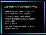 wegener s granulomatosis wg