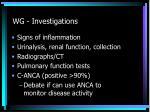 wg investigations