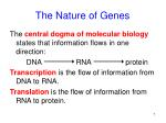 the nature of genes7