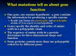 what mutations tell us about gene function