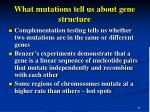 what mutations tell us about gene structure