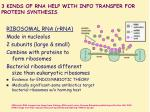 3 kinds of rna help with info transfer for protein synthesis