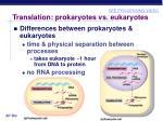 translation prokaryotes vs eukaryotes