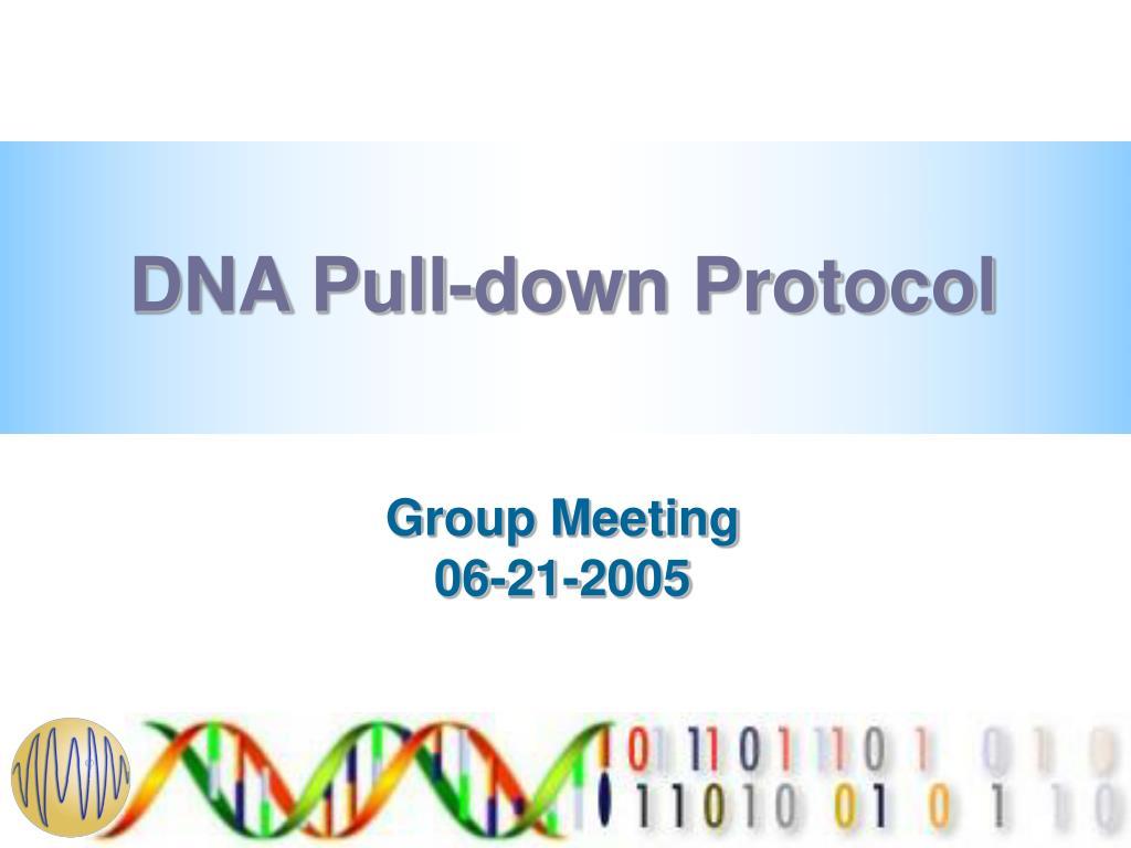 dna pull down protocol l.