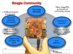 beagle community