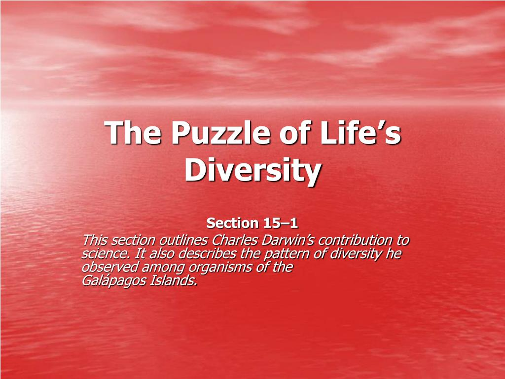 the puzzle of life s diversity l.