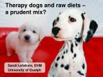 therapy dogs and raw diets a prudent mix