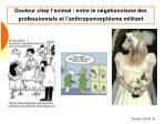 douleur chez l animal entre le n gationnisme des professionnels et l anthropomorphisme militant