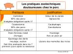 les pratiques zootechniques douloureuses chez le porc