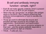 b cell and antibody immune function simple right