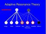 adaptive resonance theory157