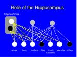 role of the hippocampus138
