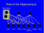 role of the hippocampus139
