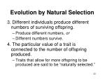 evolution by natural selection33