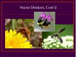 nectar drinkers cont d