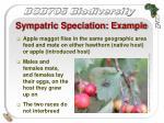 sympatric speciation example