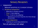 sensory receptors13