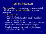 sensory receptors7