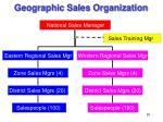 geographic sales organization