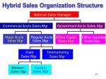 hybrid sales organization structure