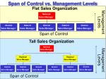 span of control vs management levels