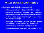 what does ssa provide