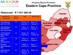 progress report provinces eastern cape province