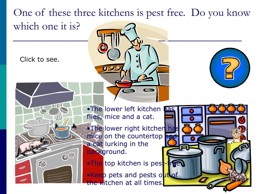 One of these three kitchens is pest free.  Do you know which one it is?