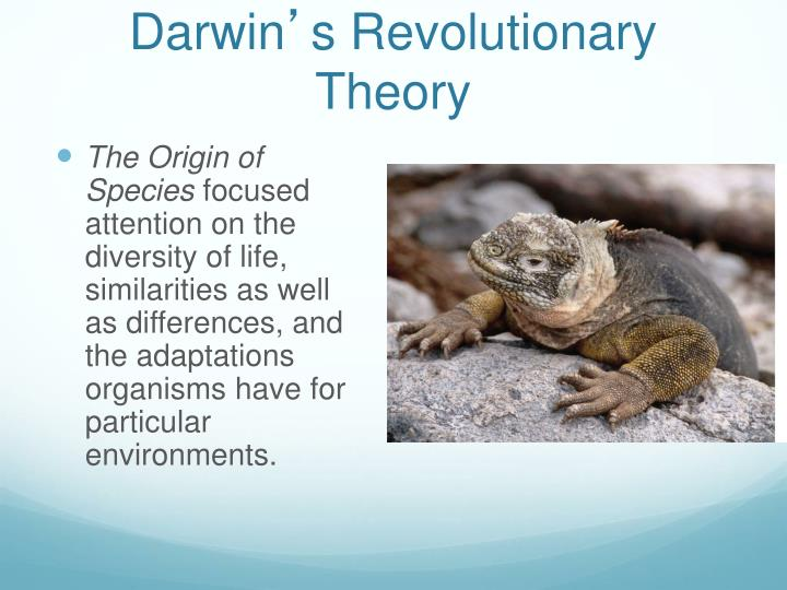 Darwin s revolutionary theory