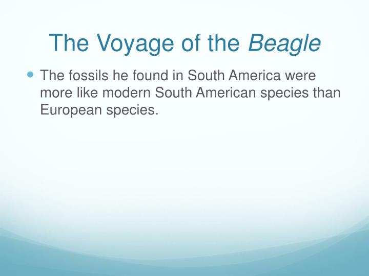 The Voyage of the